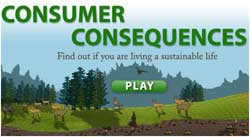 Consumer Consequences Game