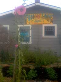 Food Not Lawns House Santa Cruz