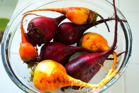 Red and Golden Beets from Route One Farm